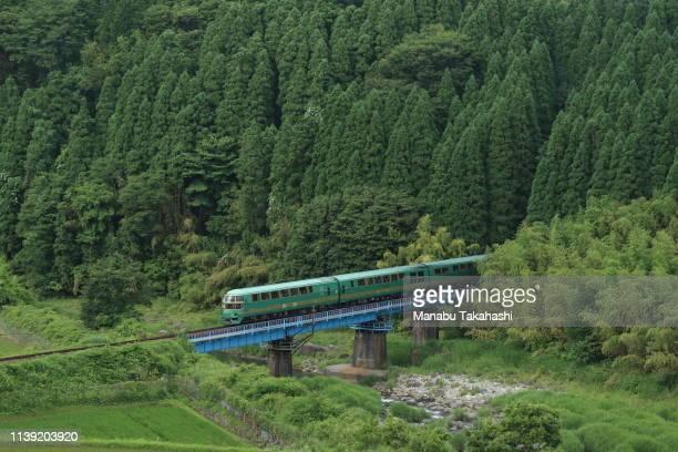 Kiha71 train 'Yufuinnomori' runs between Bungo-Nakamura and Hikiji stations on June 17, 2016 in Kusu, Oita, Japan.