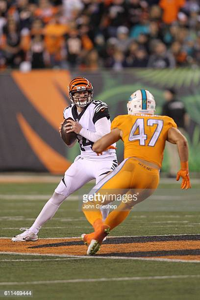Kiko Alonso of the Miami Dolphins pressures Andy Dalton of the Cincinnati Bengals during the third quarter at Paul Brown Stadium on September 29 2016...