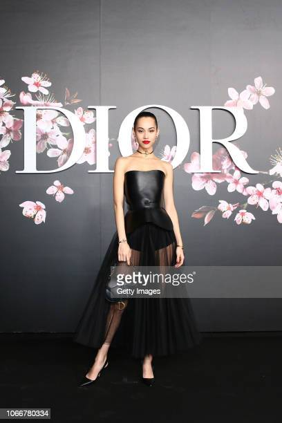 Kiko Mizuhara attends the photocall at the Dior Pre Fall 2019 Men's Collection on November 30, 2018 in Tokyo, Japan.