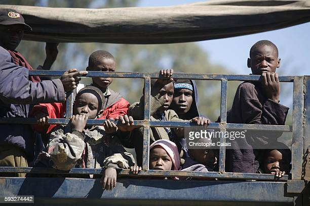 Kikuyu people who fled the Eldoret region in Rift Valley arrive at the Nakuru Showground to take refuge hoping to get transportation to a central...