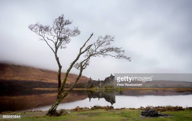 Kilchurn Castle lone tree