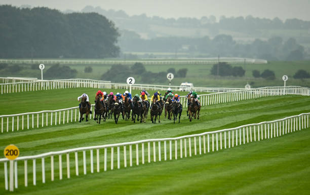 IRL: Horse Racing from The Curragh
