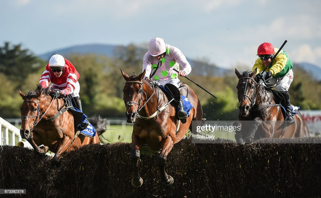 Punchestown Races - Day 2 : News Photo