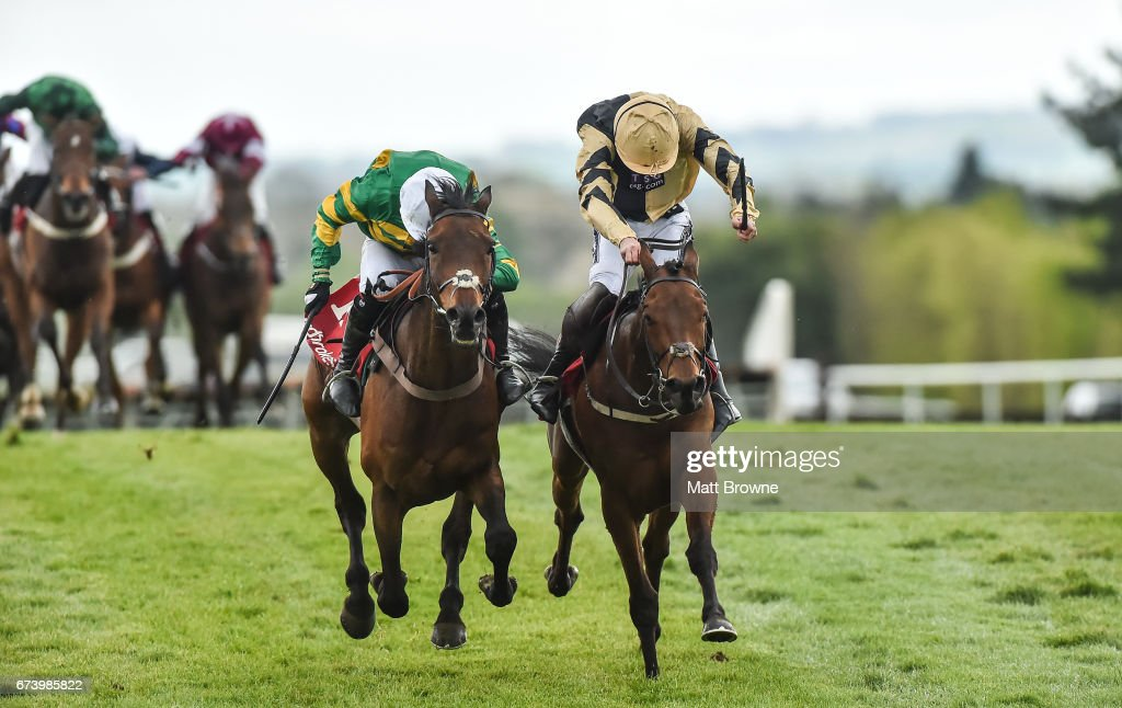 Punchestown Races - Day 3 : News Photo