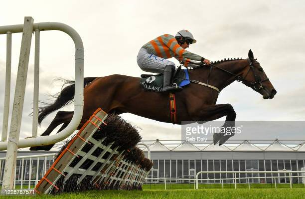 Kildare Ireland 29 September 2020 Robinnia with Paul Townend up jumps the last on their way to winning the Killashee Hotel Mares Maiden Hurdle at...