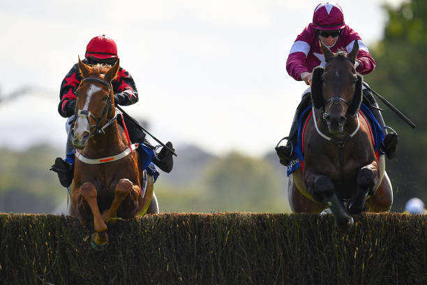 IRL: Horse Racing from Punchestown