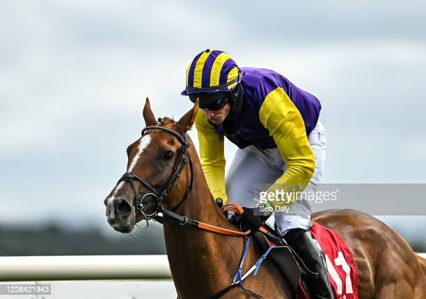 Kildare Ireland 9 September 2020 Scalino with Mikey Fogarty up on their way to winning the Baltreacy Handicap Hurdle DIV II at Punchestown Racecourse...