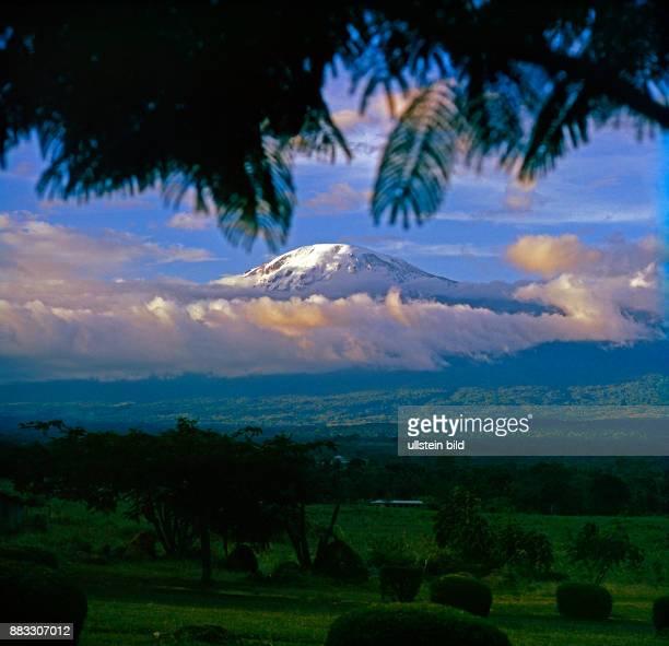 Kilimandscharo das weisse Dach Afrikas hier mit Neuschnee bedeckt heißt auf Kisuaheli Leuchtender Berg Ueber dem Bergregenwaldguertel haengt ein...