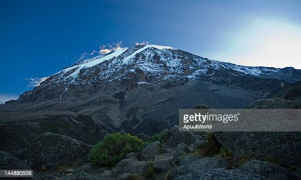 kilimanjaro in sunrise - kilimanjaro stock photos and pictures
