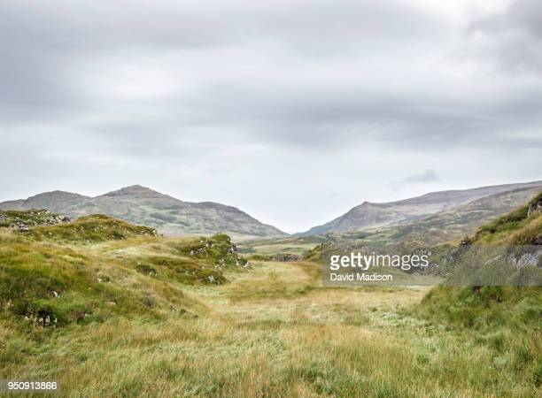 killarney national park, ireland - republic of ireland stock pictures, royalty-free photos & images