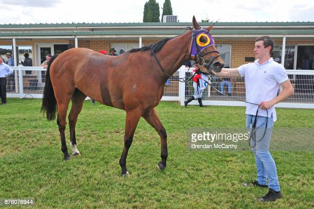 Kilowatt and strapper Harry Lafferty after winning the Gilchrist Co BM64 Handicap at Donald Racecourse on November 19 2017 in Donald Australia
