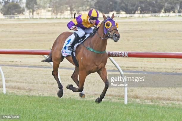 Kilowatt ridden by /j1 / wins the Gilchrist Co BM64 Handicap at Donald Racecourse on November 19 2017 in Donald Australia