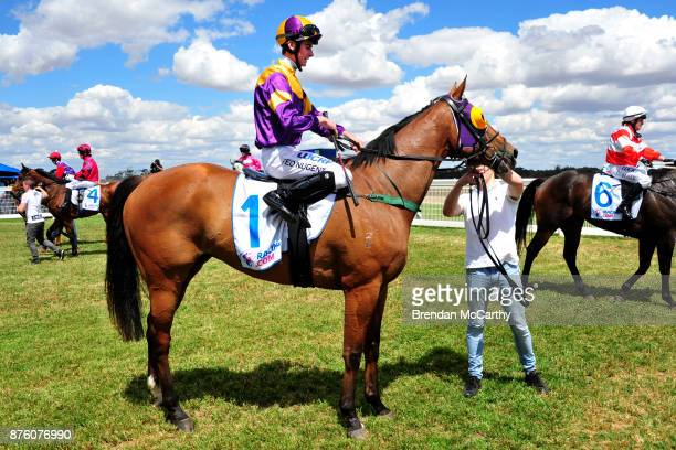 Kilowatt ridden by Teodore Nugent returns to the mounting yard after winning the Gilchrist Co BM64 Handicap at Donald Racecourse on November 19 2017...