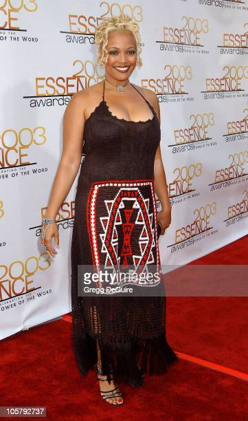 Kim Fields during 2003 Essence Awards Arrivals at Kodak Theatre in Hollywood California United States