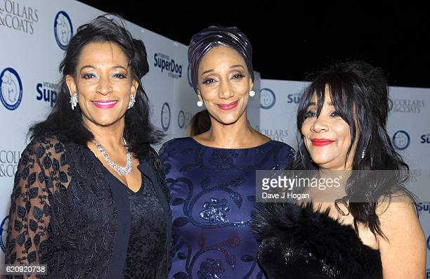 Kim Sledge Debbie Sledge and Joni Sledge of the Sister Sledge attend Battersea Dogs and Cats Home's annual Collars and Coats Gala Ball at Battersea...