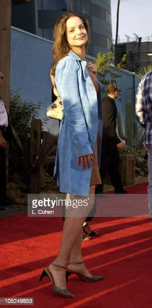 Kimberly Williams during 'Open Range' Premiere Red Carpet at Arclight Cinerama Dome in Los Angeles California United States