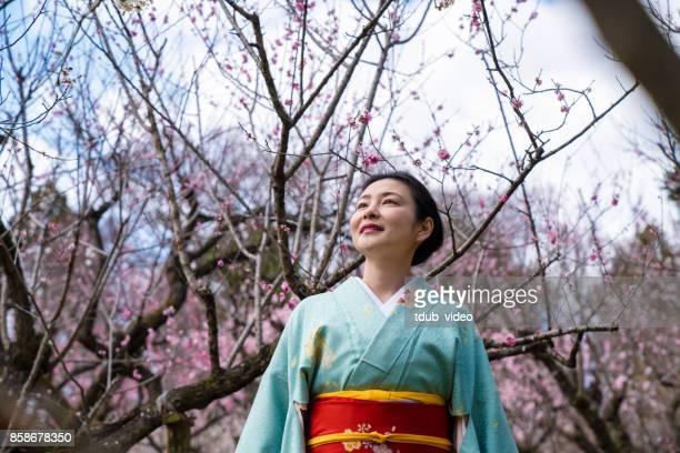 kimono lady outside - tdub_video stock pictures, royalty-free photos & images