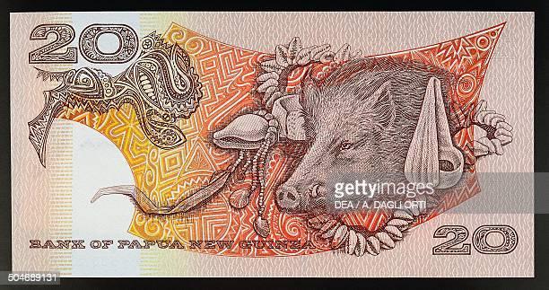 20 kina banknote 19811985 reverse boar Papua New Guinea 20th century