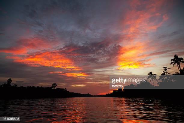 Kinabatangan River, Borneo, Sabah State of Malaysia