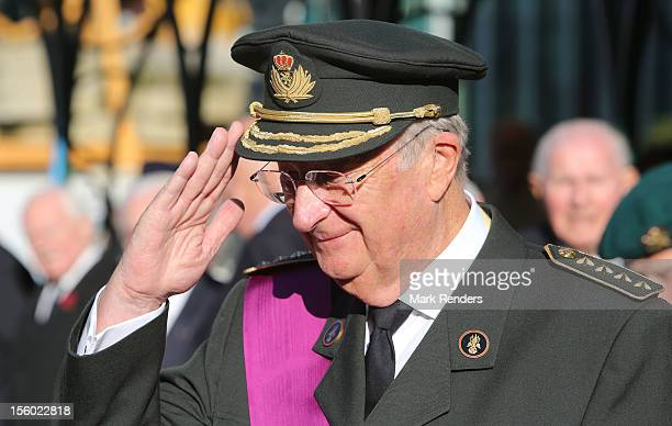 King Albert II of Belgium attends a tribute to the unknown soldier on November 11 2012 in Brussels Belgium