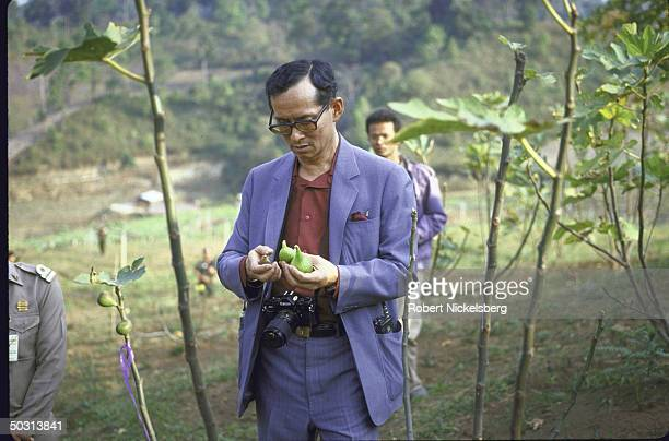 King Bhumibol Adulyadej aka King Rama visiting royal sponsored agricultural experiment station at Doi Inthanon Natl Park
