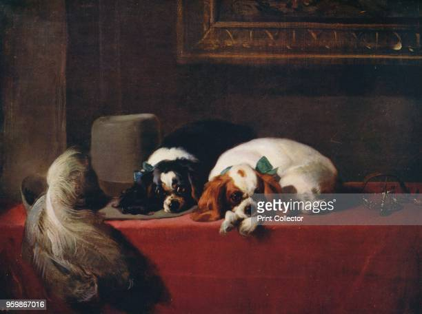 King Charles Spaniels ' The painting is held by the Tate Gallery London From International Art Past and Present by Alfred Yockney [Virtue Company...