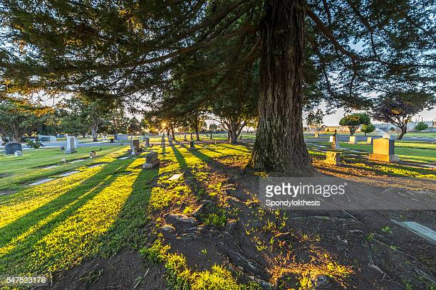 king city cemetery district, california - city of monterey california stock pictures, royalty-free photos & images