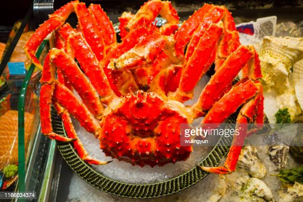 king crab on ice - alaskan king crab stock pictures, royalty-free photos & images