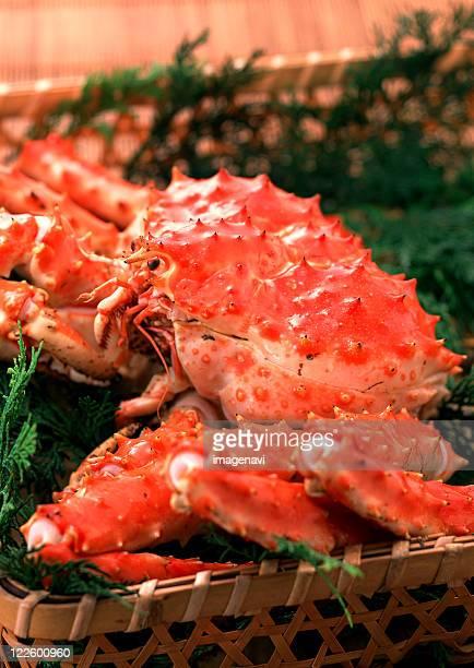 king crab - alaskan king crab stock pictures, royalty-free photos & images