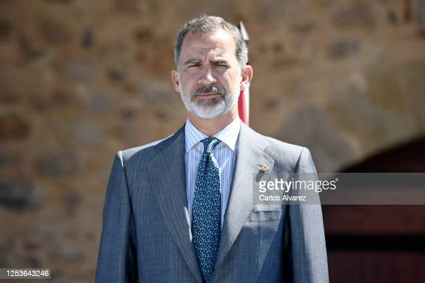 King Felipe of Spain attends a ceremony to strengthen the relationships between Spain and Portugal at Elvas Castle on July 01, 2020 in Elvas,...