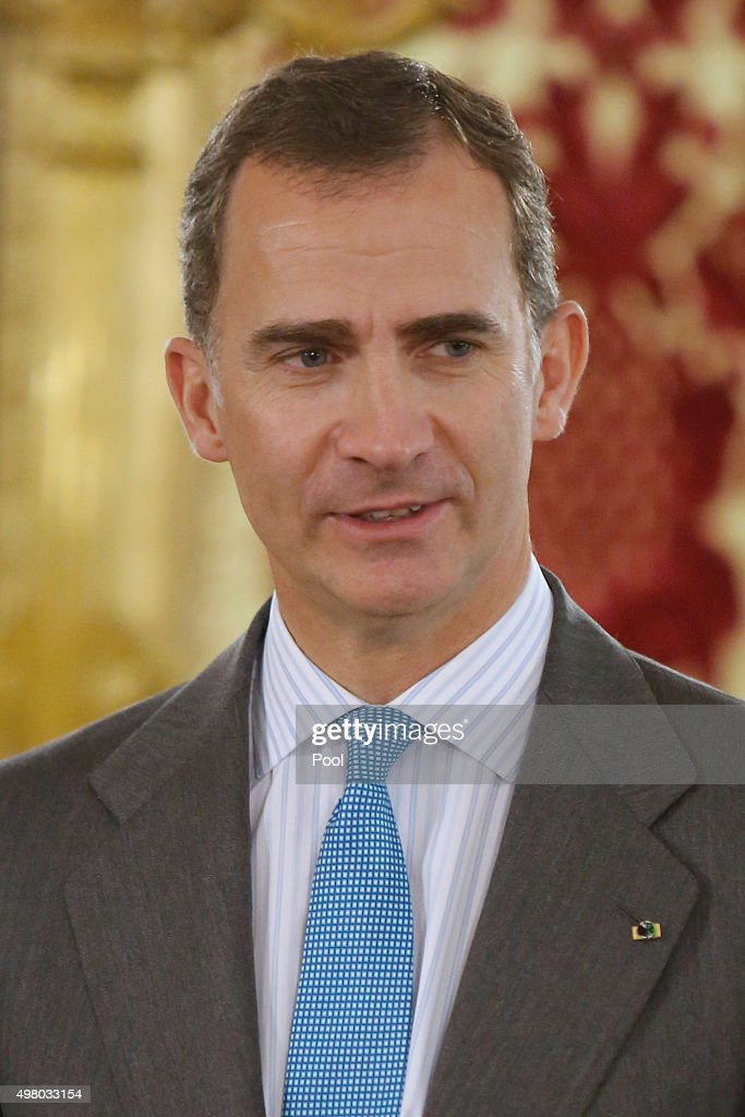 King Felipe VI of Spain attends a lunch at the Royal Palace on November 20, 2015 in Madrid, Spain.