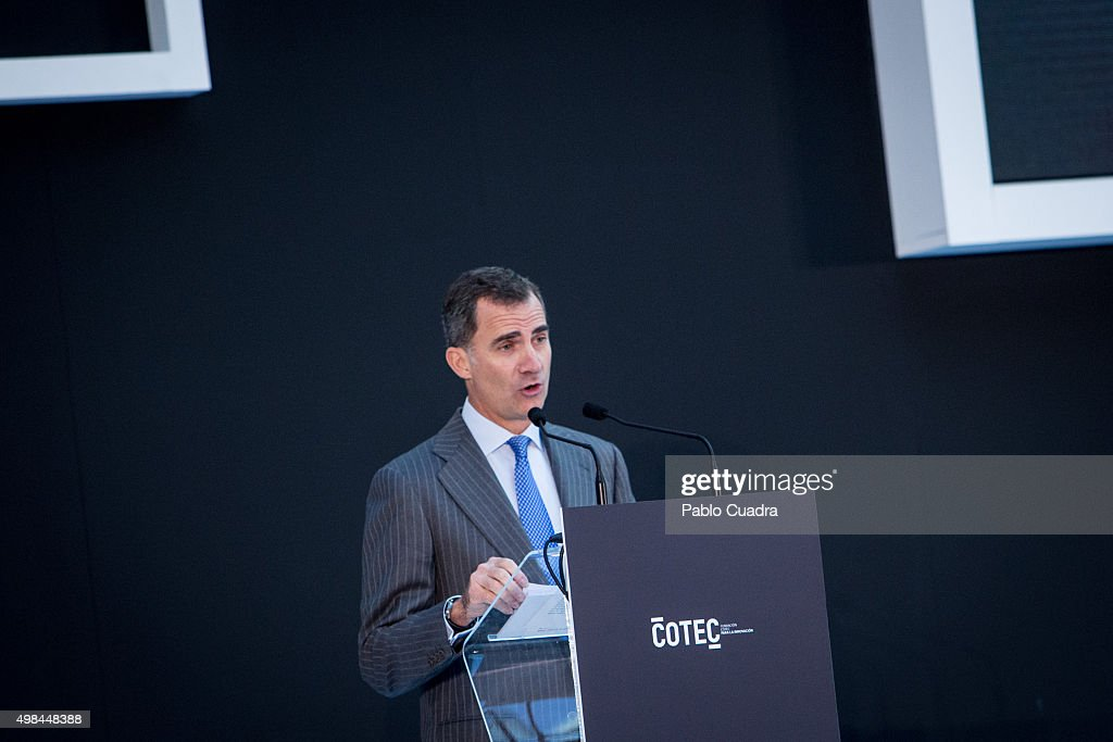 King Felipe VI of Spain attends COTEC Foundation meeting at Cibele Palace on November 23, 2015 in Madrid, Spain.
