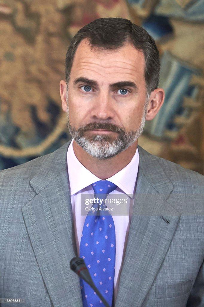 King Felipe VI of Spain receives COTEC Foundation members at the Zarzuela Palace on June 22, 2015 in Madrid, Spain.