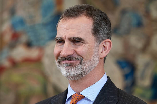 ESP: King Felipe Of Spain Attends Audiences At Zarzuela Palace