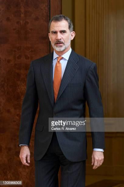 King Felipe VI of Spain receives members of 'Consejo de la Diputacion de la Grandeza de Espana y Titulos del Reino' at Zarzuela Palace on February...