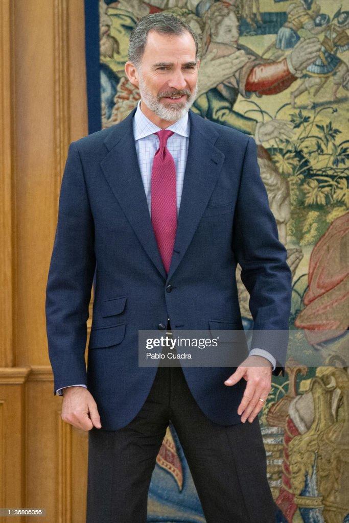 King Felipe Of Spain Receives Santiago Muñoz Machado, Director Of The RAE Academy : News Photo