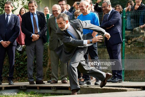 King Felipe VI of Spain visits Moal village on October 20 2018 in Cangas de Narcea Spain Moal has been honoured as the 2018 Best Asturian Village on...