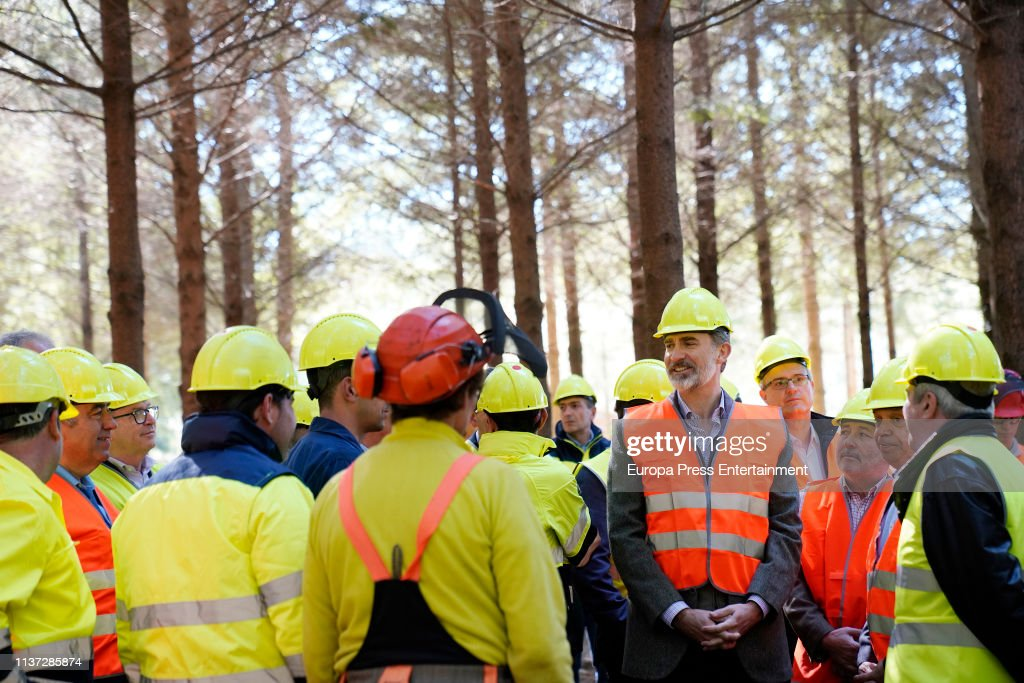 ESP: King Felipe VI Presides Over An Act On The International Day Of Forests