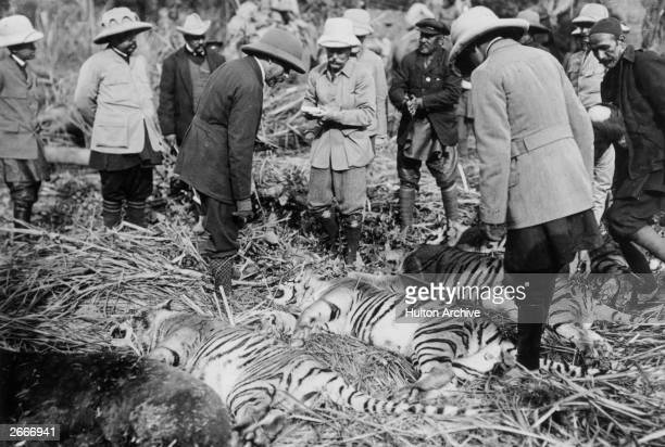 King George V inspects the day's kill after a tiger hunt in India during his royal visit to celebrate his accession to the throne Original Artwork...