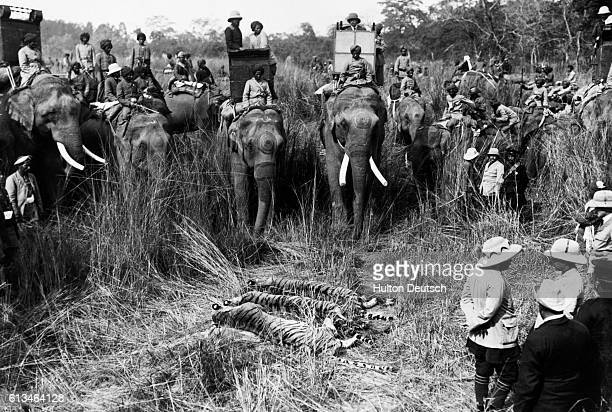 King George V of England is present at the end of a tiger hunt during a state visit to India