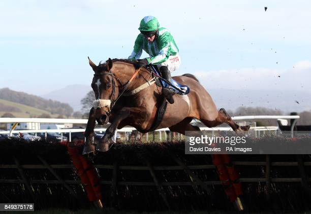 King Helissio ridden by Noel Fehily in the Jenny Appleton Family Maiden Hurdle at Ludlow