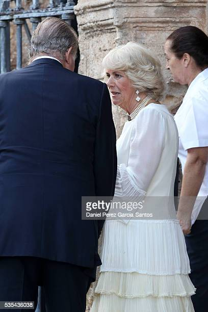 King Juan Carlos and Camilla, The Duchess of Cornwall, attend the wedding of Lady Charlotte Wellesley and Alejandro Santo Domingo at Illora on May...
