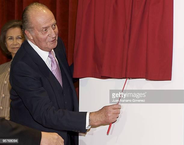 King Juan Carlos of Spain attends the inauguration of the 'Vivero Industrial De Empresas De La Camara De Comercio' on January 13, 2010 in Avila,...