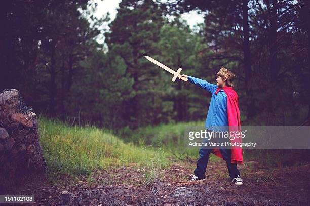 king of courage - sword stock pictures, royalty-free photos & images