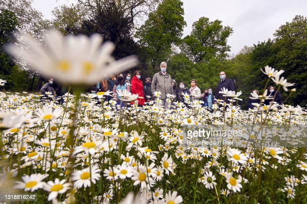 King Philippe of Belgium welcomes classes in the fifth primary of schools for a guided walk to discover the biodiversity of the Royal domain of...