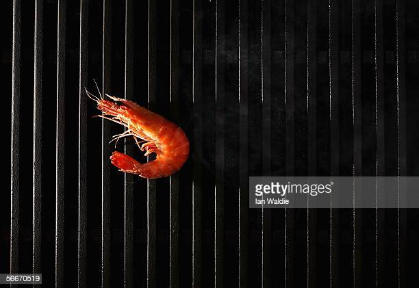 A king prawn cooks on a barbeque January 24 2006 in Sydney Australia Australian comedian Paul 'Crocodile Dundee' Hogan coined the massively...