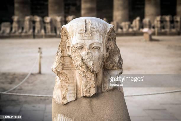 king ramses ii head, karnak temple, karnak, luxor, egypt - egypt stock pictures, royalty-free photos & images