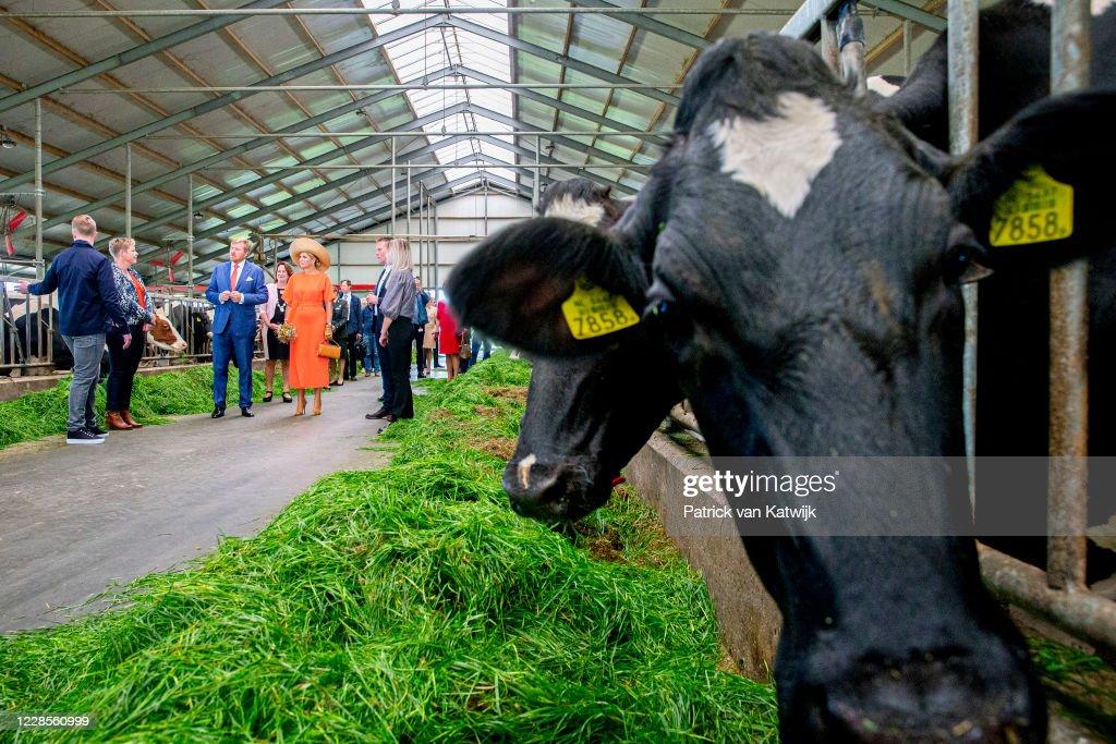 King Willem-Alexander Of The Netherlands and Queen Maxima Of The Netherlands Visit Region Friesland : Nieuwsfoto's