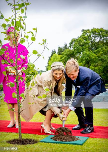 King WillemAlexander of The Netherlands and Queen Maxima of The Netherlands plant an tree with President Michael Higgins of Ireland and his wife...