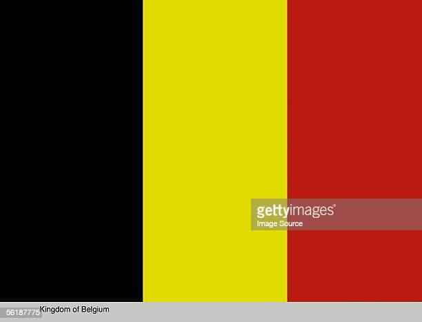 kingdom of belgium - drapeau belge photos et images de collection